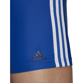 adidas Fit 3-Stripes Bokserit Miehet, collegiate royal/white